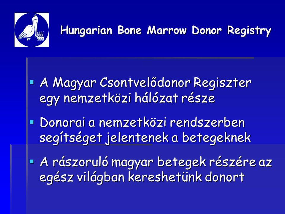 Az idegen donor keresés eredménye 2004