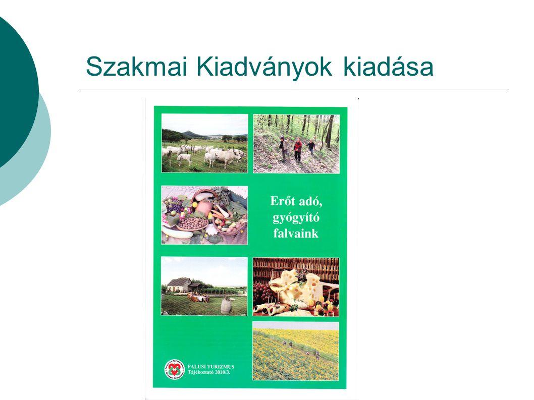 Szakmai Kiadványok kiadása