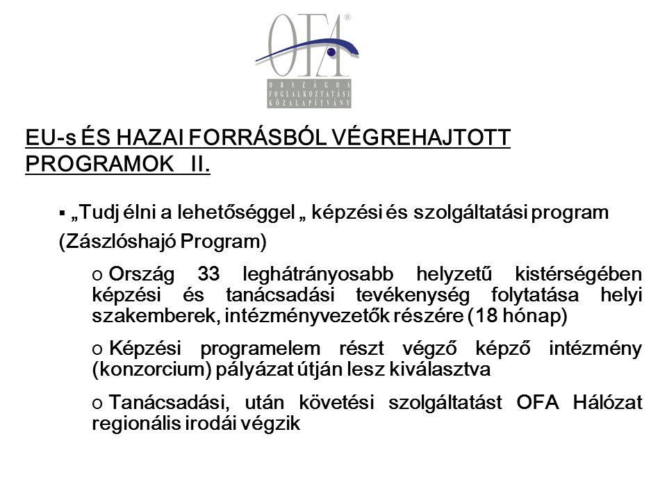 EU-s ÉS HAZAI FORRÁSBÓL VÉGREHAJTOTT PROGRAMOK II.
