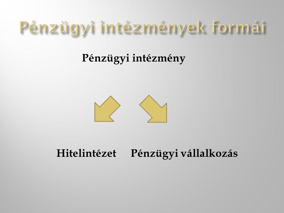Pénzügyi intézmény HitelintézetPénzügyi vállalkozás