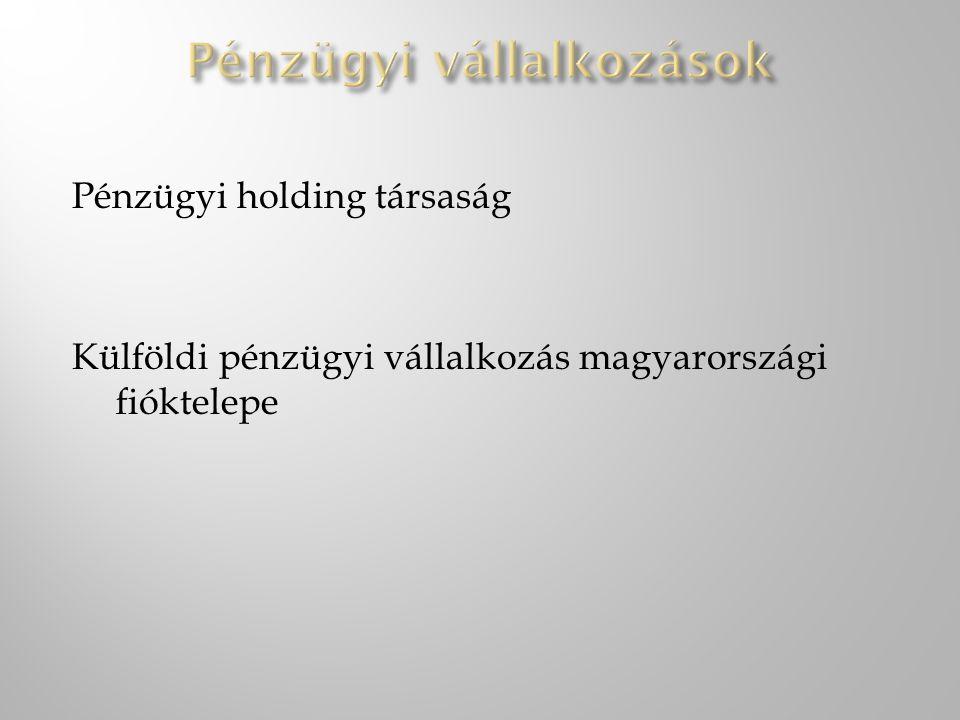 Pénzügyi holding társaság Külföldi pénzügyi vállalkozás magyarországi fióktelepe