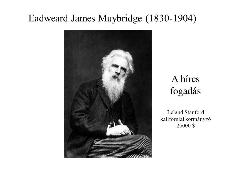 Eadweard James Muybridge (1830-1904) A híres fogadás Leland Stanford kaliforniai kormányzó 25000 $