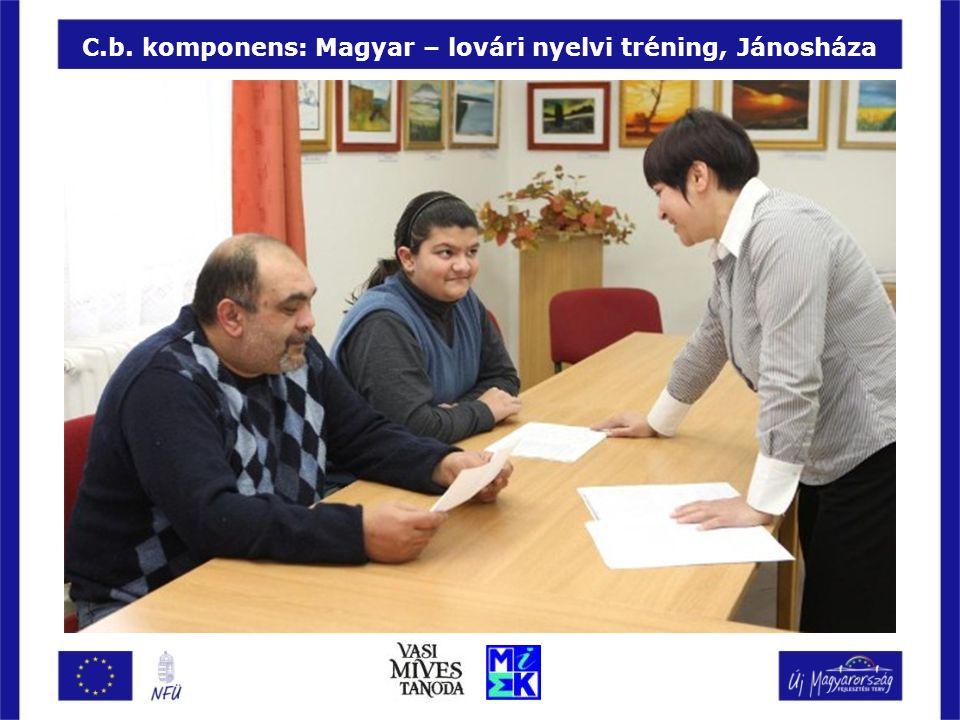 C.b. komponens: Magyar – lovári nyelvi tréning, Jánosháza