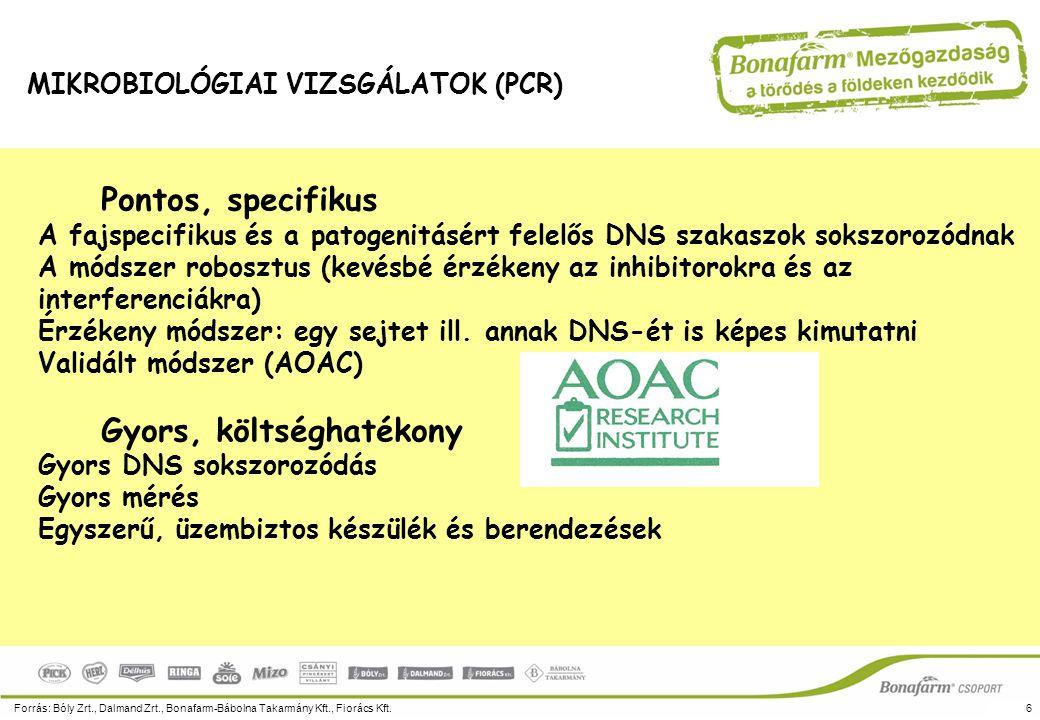 Pontos, specifikus A fajspecifikus és a patogenitásért felelős DNS szakaszok sokszorozódnak A módszer robosztus (kevésbé érzékeny az inhibitorokra és
