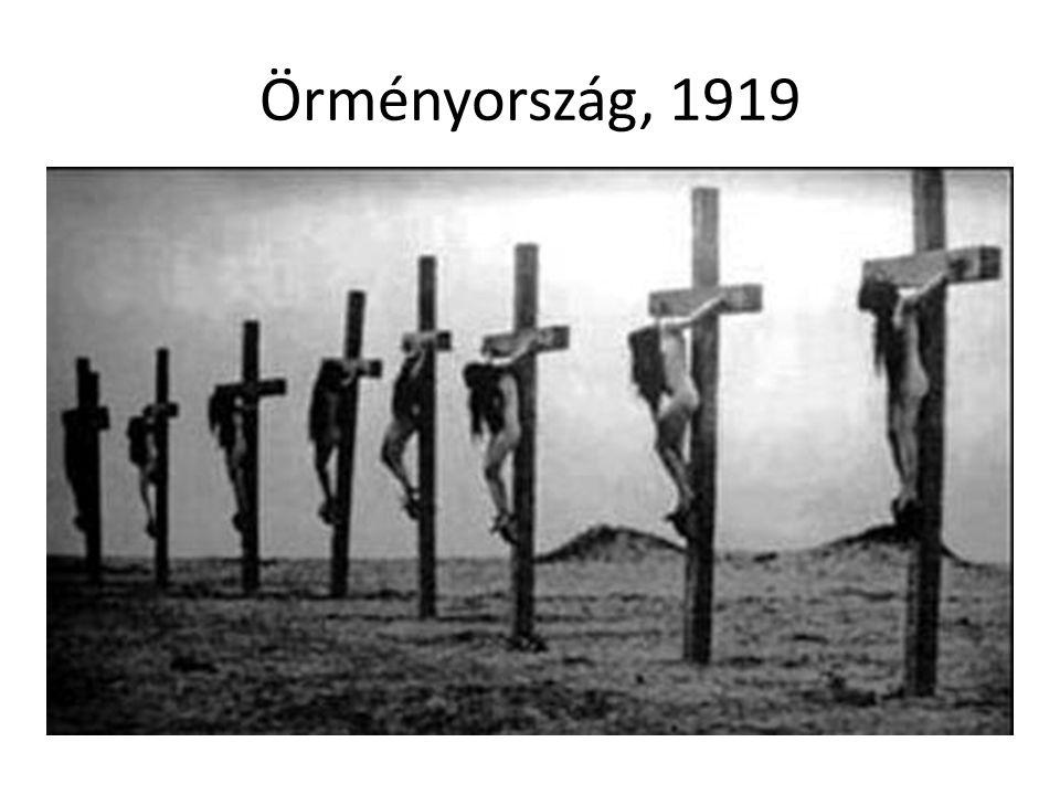 Örményország, 1919