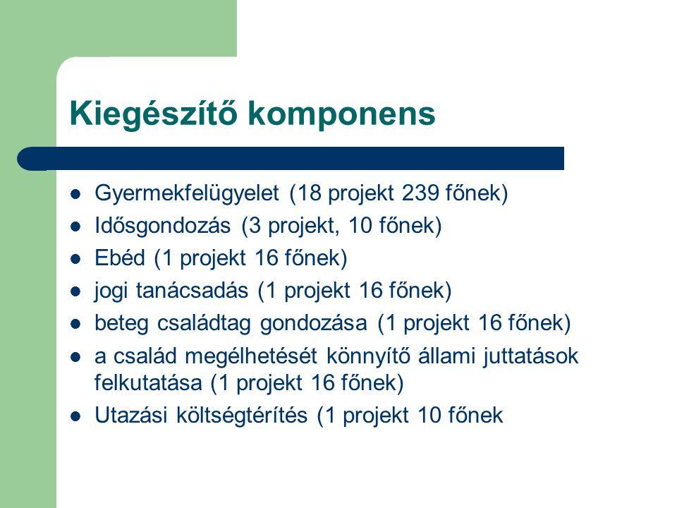 Kiegészítő komponens Gyermekfelügyelet (18 projekt 239 főnek) Idősgondozás (3 projekt, 10 főnek) Ebéd (1 projekt 16 főnek) jogi tanácsadás (1 projekt 16 főnek) beteg családtag gondozása (1 projekt 16 főnek) a család megélhetését könnyítő állami juttatások felkutatása (1 projekt 16 főnek) Utazási költségtérítés (1 projekt 10 főnek