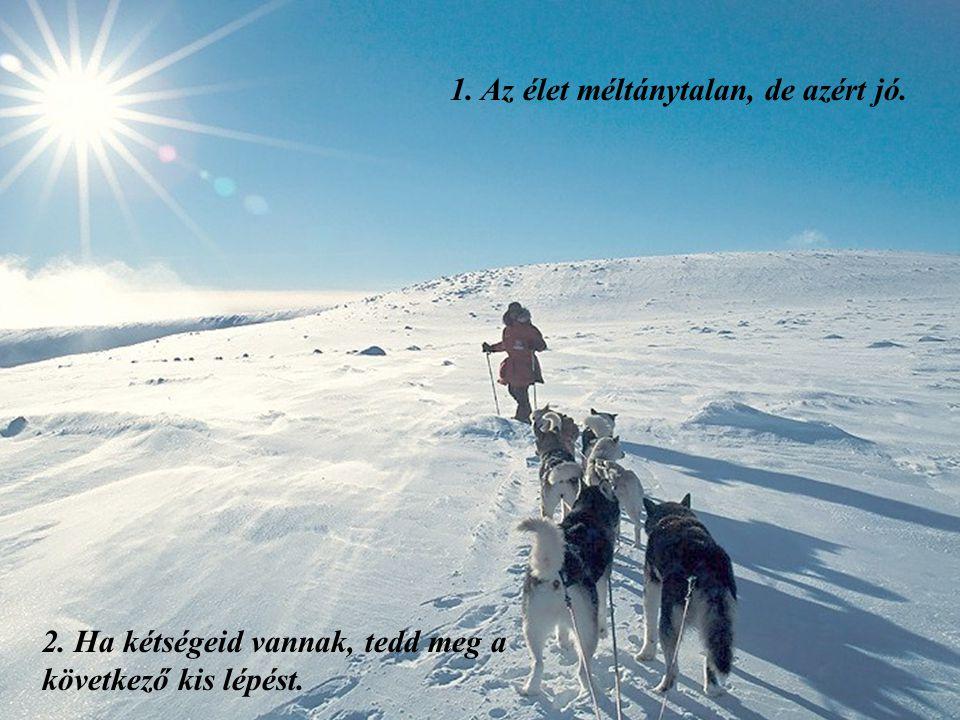 Norvegija – Šiaurės pašvaistė 45 le cke az életben Nov 2009 He YanMusic: snowdream
