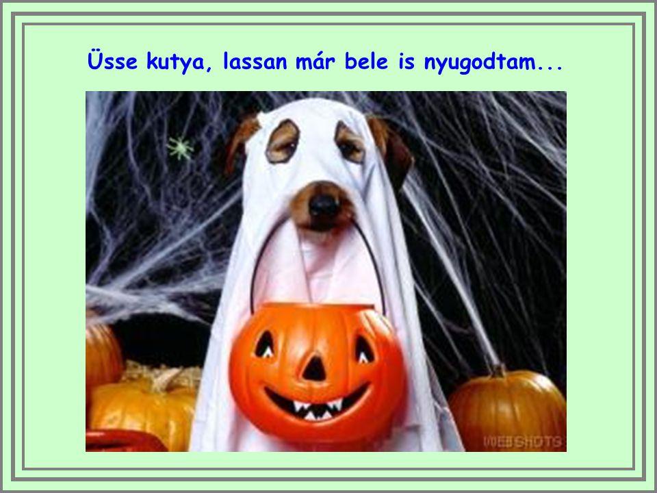 """A rendes tökök közül egyre többen adják el a lelküket és mennek el """"Halloween-töknek"""