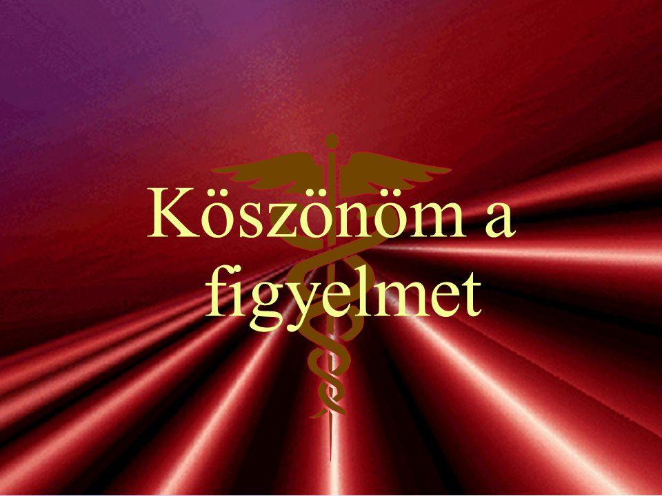 Kincses Gyula28/30 A könyv fő inspirátorai Az 1998 és 2001 között a MeH-ben végzett munkák.
