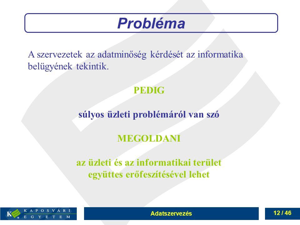 Adatszervezés 12 / 46 Probléma A szervezetek az adatminőség kérdését az informatika belügyének tekintik. PEDIG súlyos üzleti problémáról van szó MEGOL