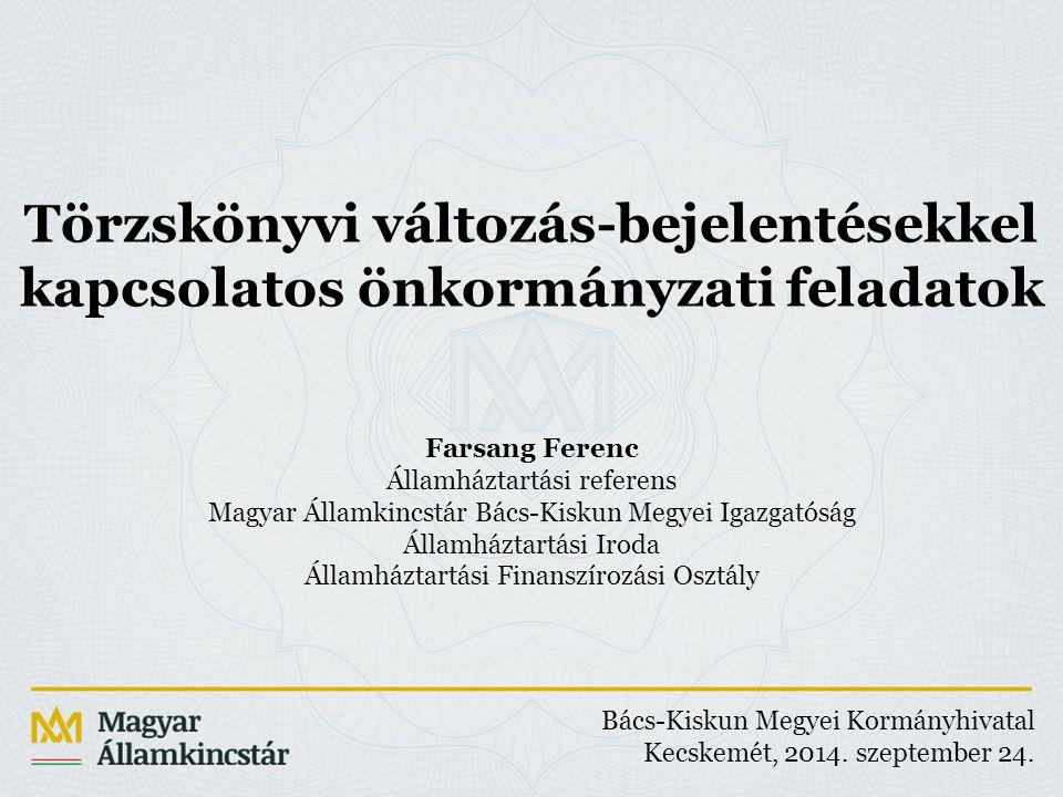 A Magyar Államkincstár honlapján elérhető törzskönyvi lekérdező rendszer.