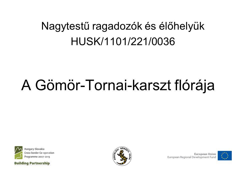 A Gömör-Tornai-karszt flórája Nagytestű ragadozók és élőhelyük HUSK/1101/221/0036