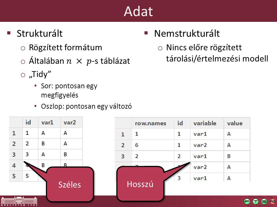 Adat  Nemstrukturált o Nincs előre rögzített tárolási/értelmezési modell o Csak metaadat o Pl.