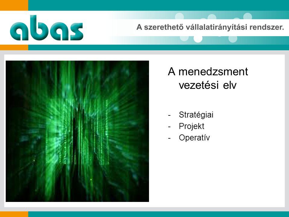 A menedzsment vezetési elv -Stratégiai -Projekt -Operatív