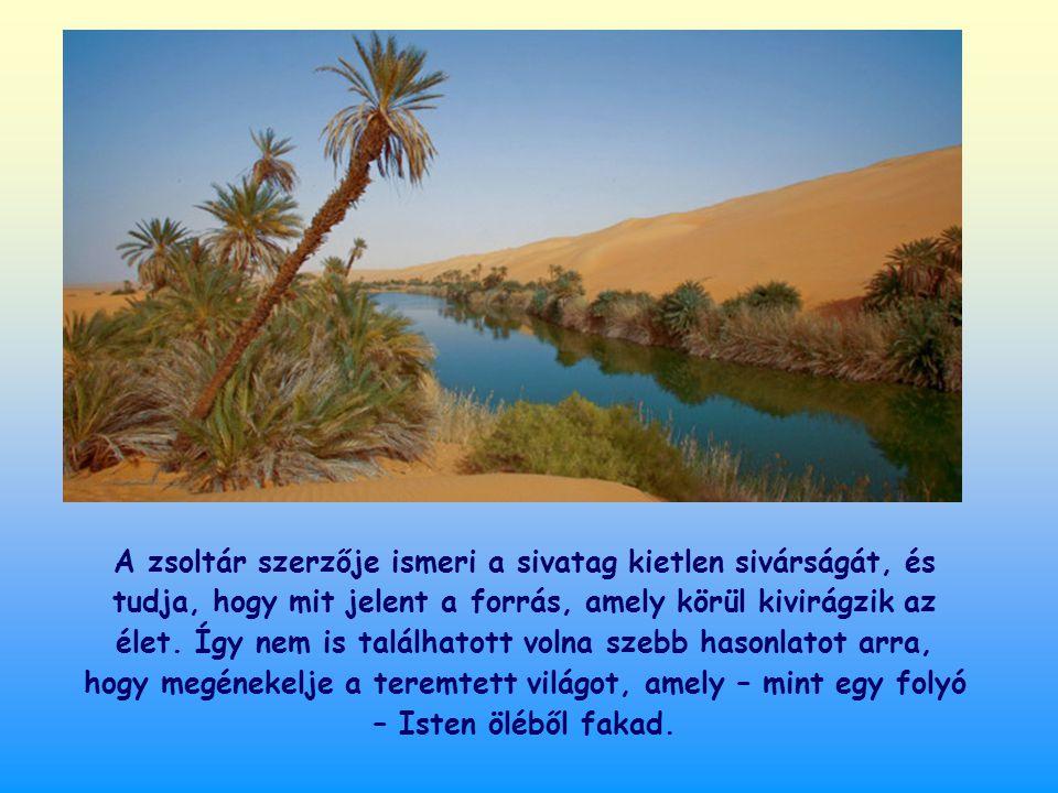 A zsoltár szerzője ismeri a sivatag kietlen sivárságát, és tudja, hogy mit jelent a forrás, amely körül kivirágzik az élet.