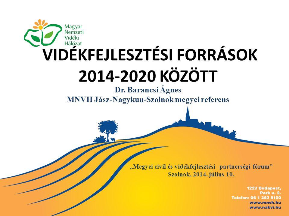 """VIDÉKFEJLESZTÉSI FORRÁSOK 2014-2020 KÖZÖTT """"Megyei civil és vidékfejlesztési partnerségi fórum"""" Szolnok, 2014. július 10. Dr. Barancsi Ágnes MNVH Jász"""