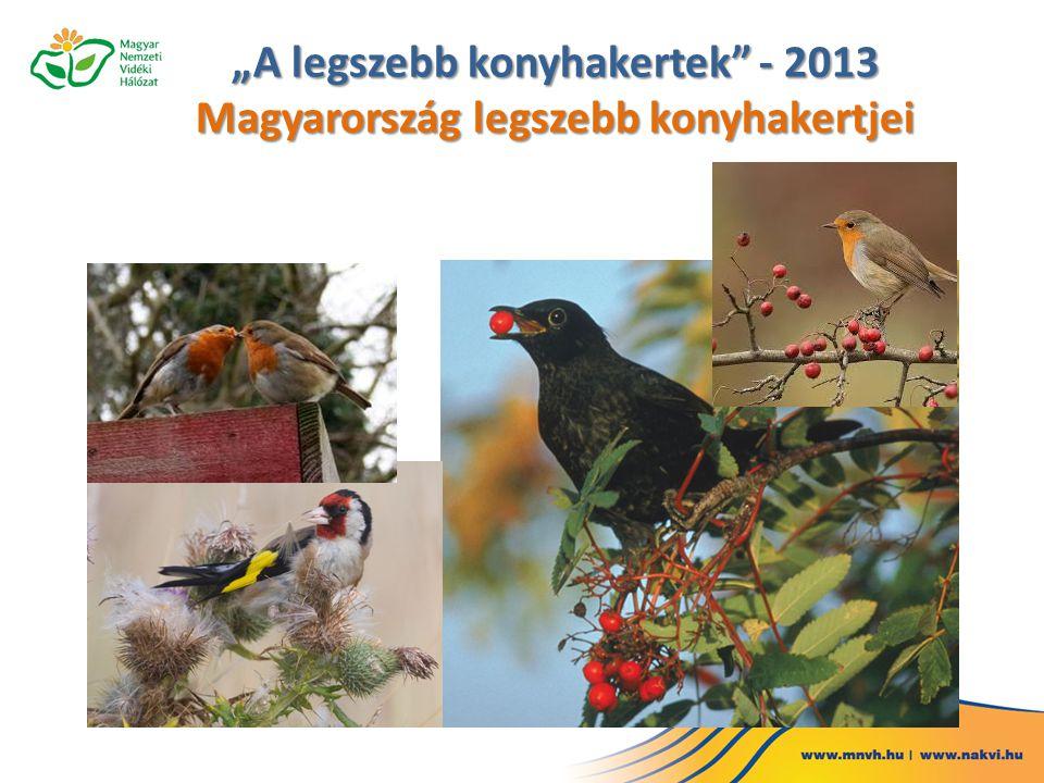 """""""A legszebb konyhakertek"""" - 2013 Magyarország legszebb konyhakertjei"""