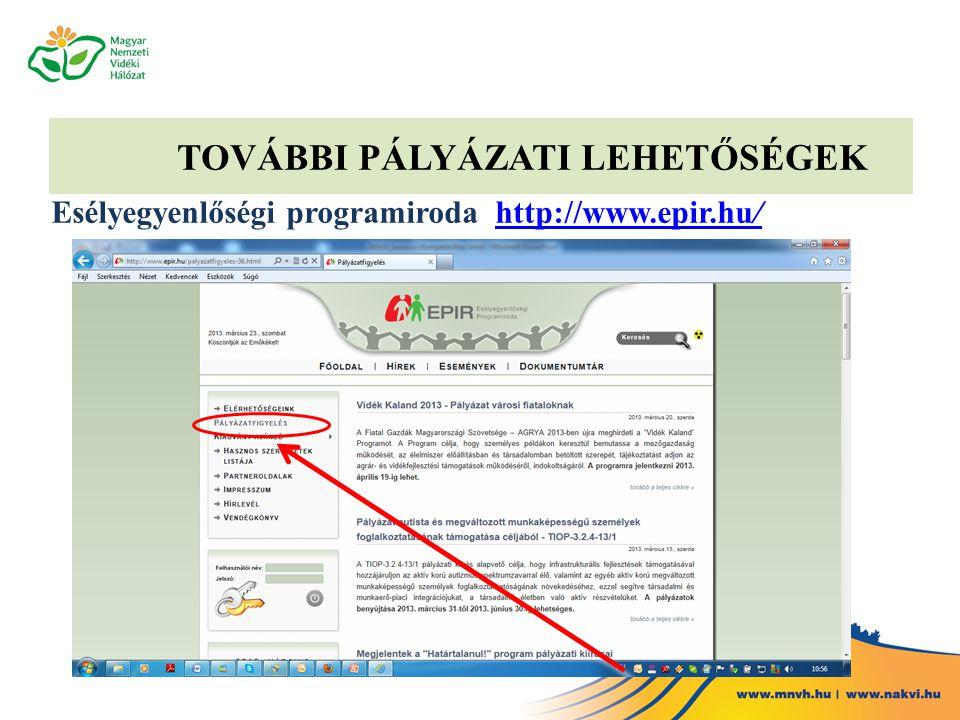 TOVÁBBI PÁLYÁZATI LEHETŐSÉGEK Esélyegyenlőségi programiroda http://www.epir.hu/http://www.epir.hu/