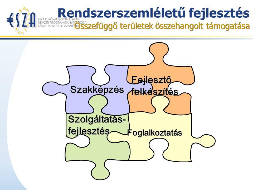 Rendszerszemléletű fejlesztés Összefüggő területek összehangolt támogatása Szakképzés Fejlesztő felkészítés Szolgáltatás- fejlesztés Foglalkoztatás
