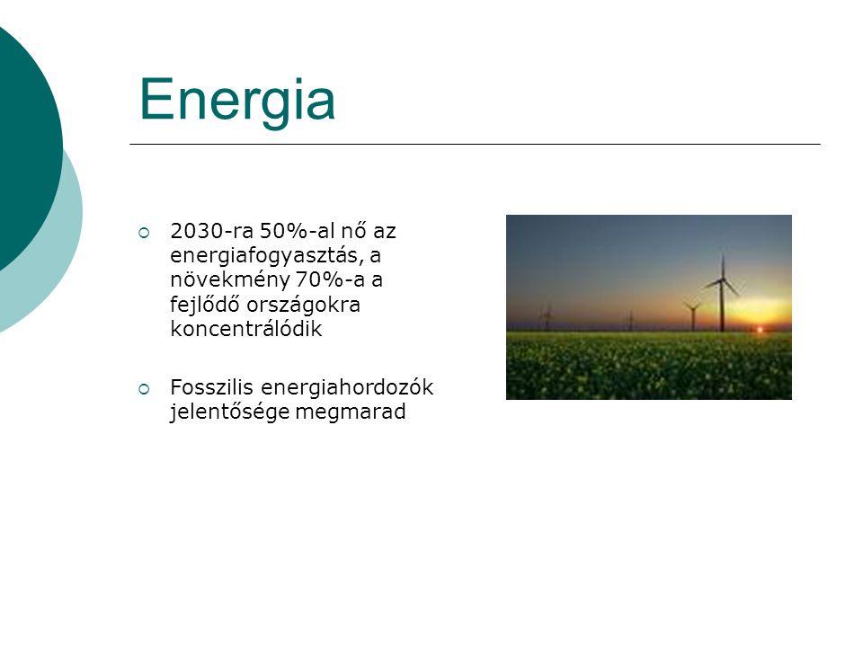 Energia  2030-ra 50%-al nő az energiafogyasztás, a növekmény 70%-a a fejlődő országokra koncentrálódik  Fosszilis energiahordozók jelentősége megmar