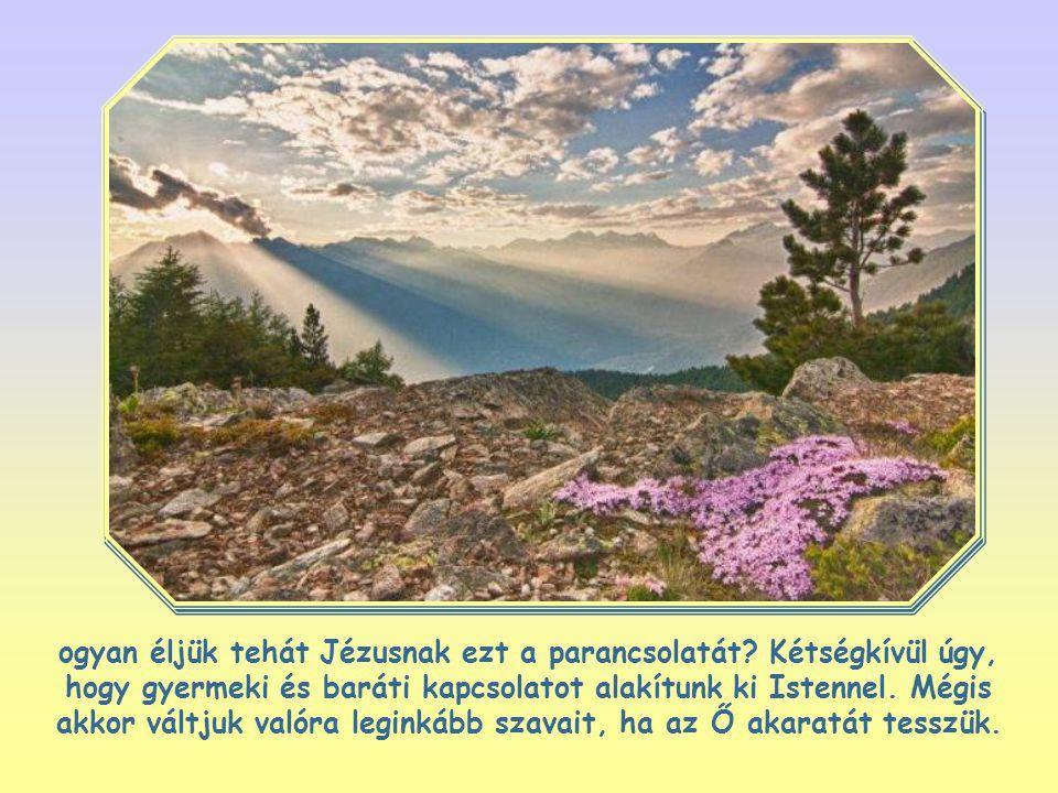 """""""Szeresd Uradat, Istenedet teljes szívedből, teljes lelkedből és teljes elmédből!"""