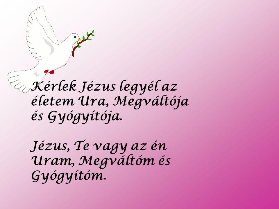 Hiszem a szívemben és kimondom a számmal, hogy Jézus Krisztus a Megváltó, Isten egyszülött Fia, aki meghalt az én b ű neimért és feltámadt a halálból