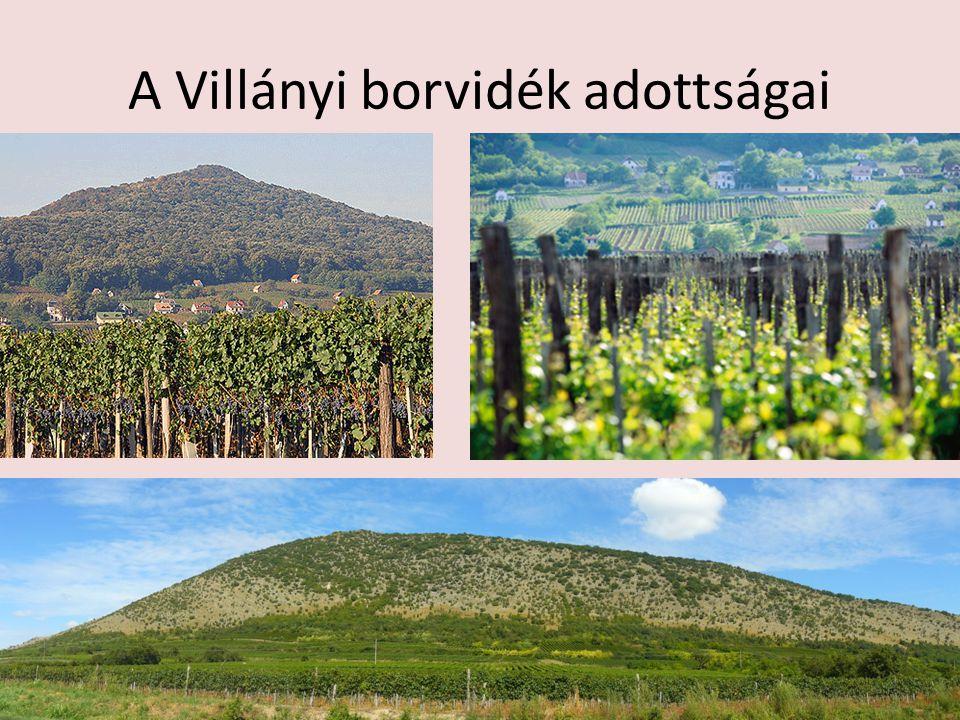 Eredetvédelem classicus kategória a borok nagy többsége, a borvidékre és azon belül a fajtára jellemző borokat csoportosítja