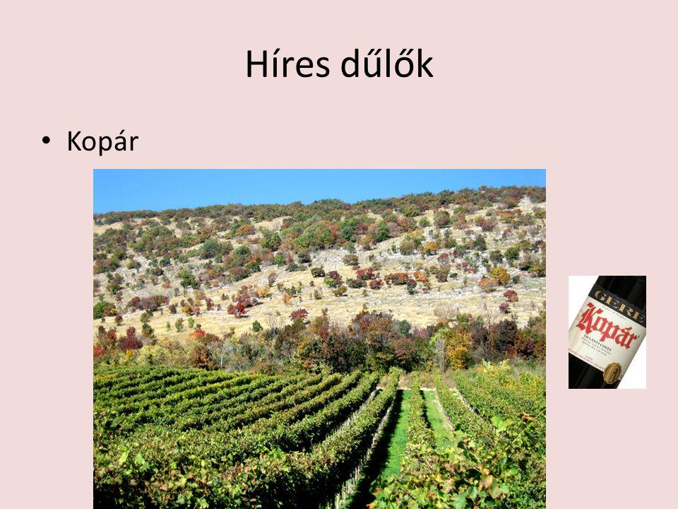 Eredetvédelem classicus kategória a borok nagy többsége, a borvidékre és azon belül a fajtára jellemző borokat csoportosítja prémium kategória