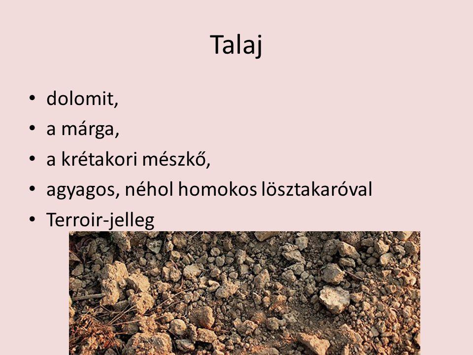 Talaj dolomit, a márga, a krétakori mészkő, agyagos, néhol homokos lösztakaróval Terroir-jelleg