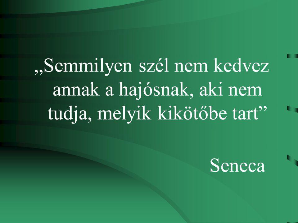 """""""Semmilyen szél nem kedvez annak a hajósnak, aki nem tudja, melyik kikötőbe tart Seneca"""