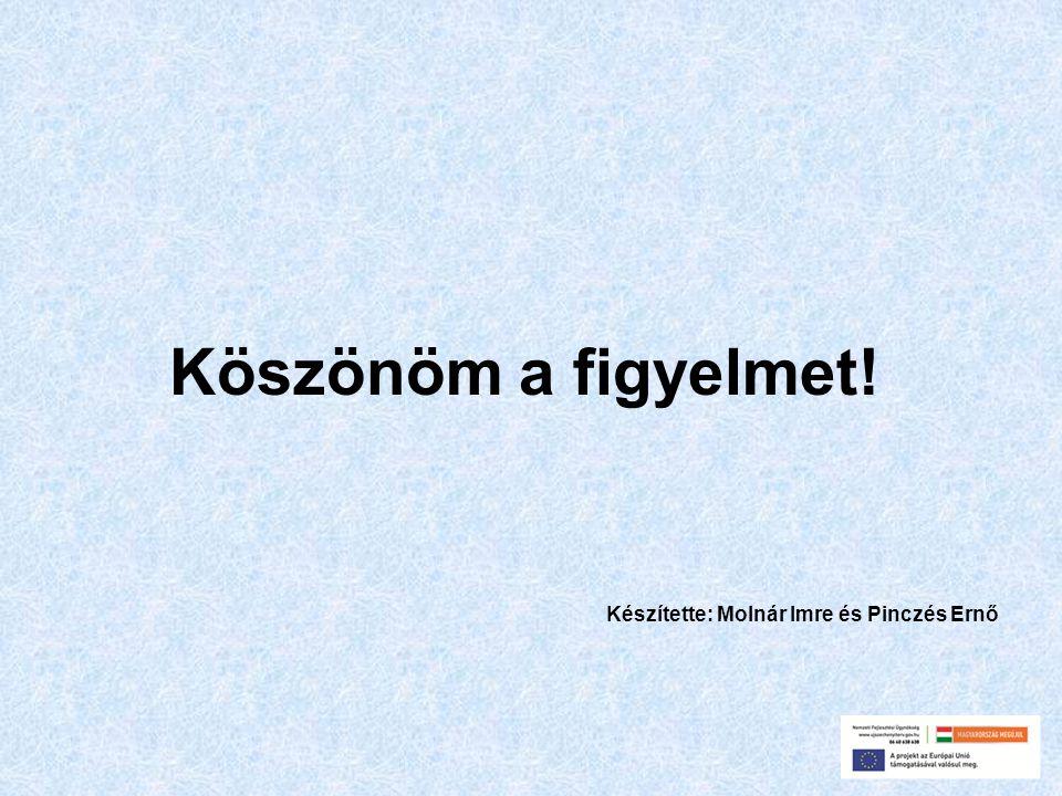 Köszönöm a figyelmet! Készítette: Molnár Imre és Pinczés Ernő