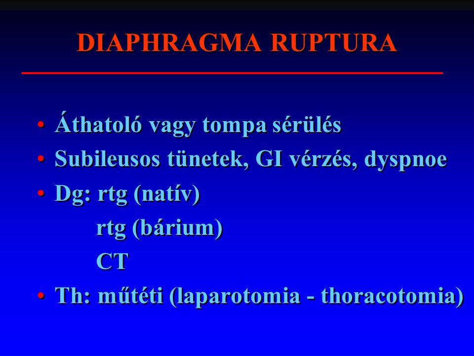 DIAPHRAGMA RUPTURA Áthatoló vagy tompa sérülés Subileusos tünetek, GI vérzés, dyspnoe Dg: rtg (natív) rtg (bárium) CT Th: műtéti (laparotomia - thorac