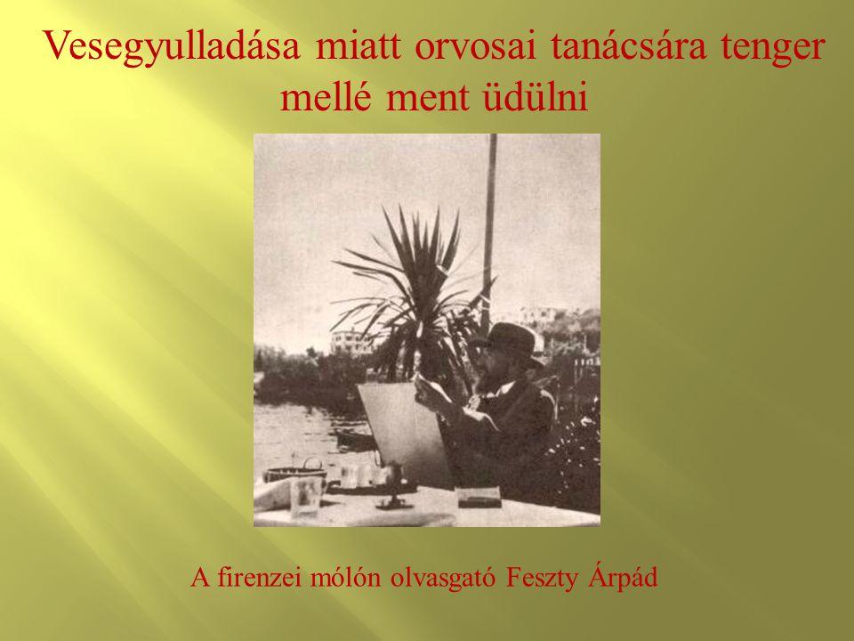 Vesegyulladása miatt orvosai tanácsára tenger mellé ment üdülni A firenzei mólón olvasgató Feszty Árpád