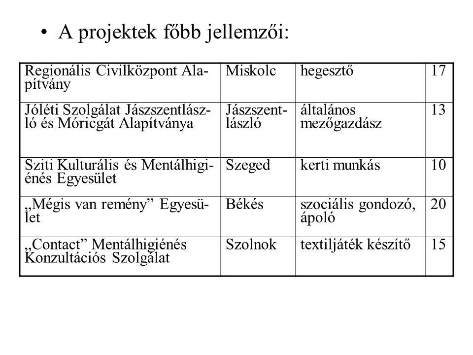 """A projektek főbb jellemzői: Regionális Civilközpont Ala- pítvány Miskolchegesztő17 Jóléti Szolgálat Jászszentlász- ló és Móricgát Alapítványa Jászszent- lászló általános mezőgazdász 13 Sziti Kulturális és Mentálhigi- énés Egyesület Szegedkerti munkás10 """"Mégis van remény Egyesü- let Békés szociális gondozó, ápoló 20 """"Contact Mentálhigiénés Konzultációs Szolgálat Szolnoktextiljáték készítő15"""