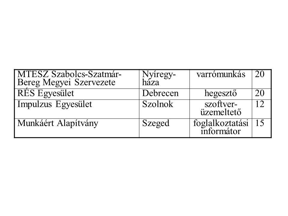 MTESZ Szabolcs-Szatmár- Bereg Megyei Szervezete Nyíregy- háza varrómunkás20 RÉS EgyesületDebrecenhegesztő20 Impulzus EgyesületSzolnok szoftver- üzemeltető 12 Munkáért AlapítványSzegedfoglalkoztatási informátor 15