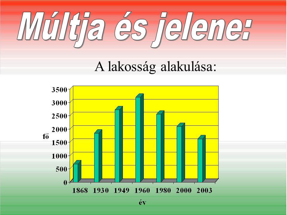 Községünk történetét a XIX. századtól követhetjük nyomon. Falunk 1815-től kezdett benépesülni és 1868-ban telepes községgé alakíttatott 124 családdal.