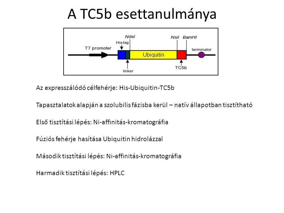 A TC5b esettanulmánya Az expresszálódó célfehérje: His-Ubiquitin-TC5b Tapasztalatok alapján a szolubilis fázisba kerül – natív állapotban tisztítható Első tisztítási lépés: Ni-affinitás-kromatográfia Fúziós fehérje hasítása Ubiquitin hidrolázzal Második tisztítási lépés: Ni-affinitás-kromatográfia Harmadik tisztítási lépés: HPLC