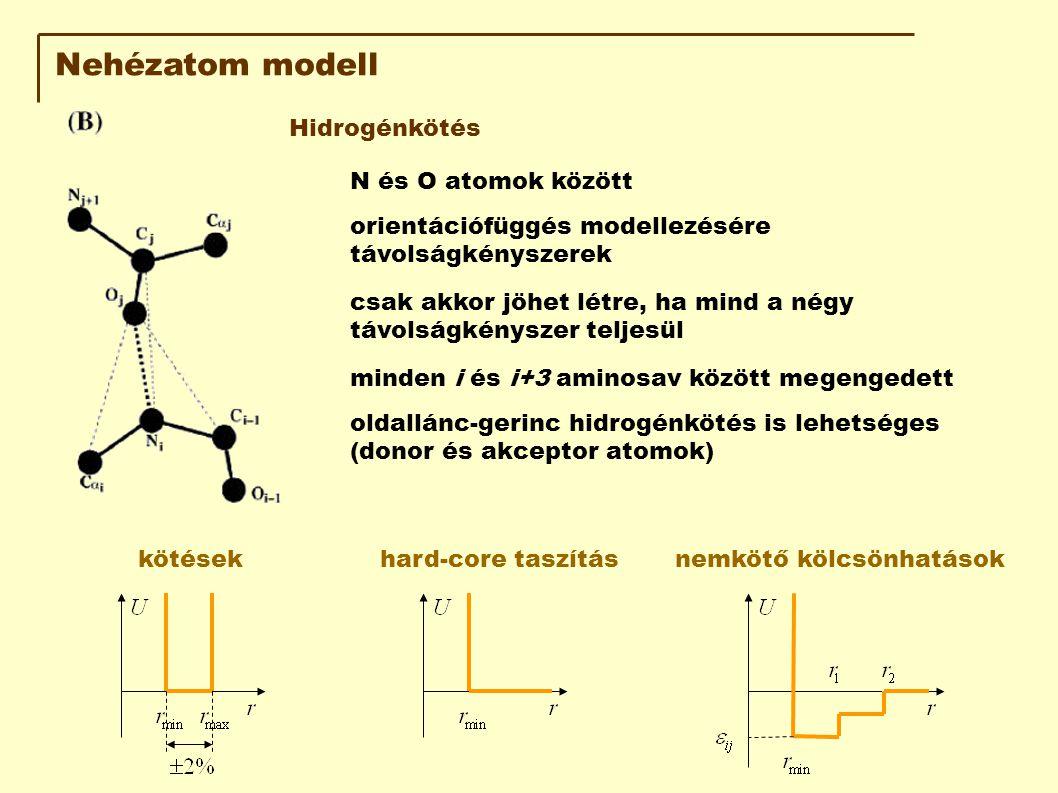 Nehézatom modell Hidrogénkötés N és O atomok között csak akkor jöhet létre, ha mind a négy távolságkényszer teljesül orientációfüggés modellezésére távolságkényszerek minden i és i+3 aminosav között megengedett oldallánc-gerinc hidrogénkötés is lehetséges (donor és akceptor atomok) kötésekhard-core taszításnemkötő kölcsönhatások