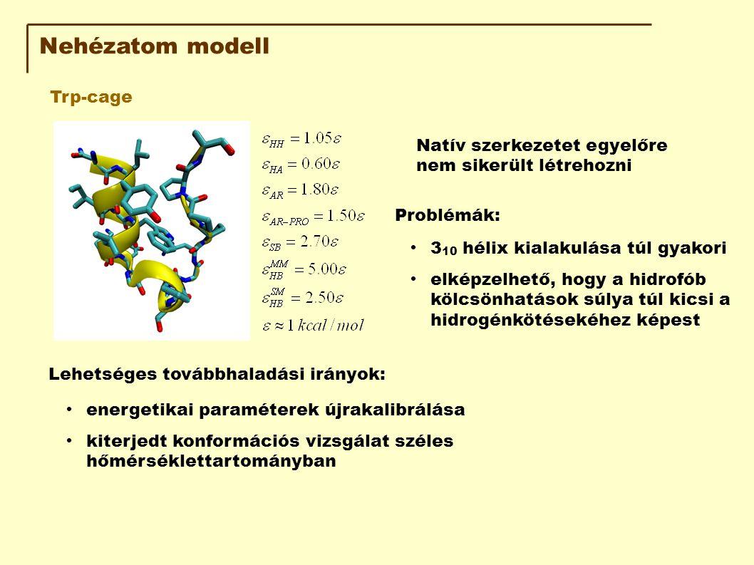 Nehézatom modell Trp-cage Natív szerkezetet egyelőre nem sikerült létrehozni Problémák: 3 10 hélix kialakulása túl gyakori elképzelhető, hogy a hidrofób kölcsönhatások súlya túl kicsi a hidrogénkötésekéhez képest Lehetséges továbbhaladási irányok: energetikai paraméterek újrakalibrálása kiterjedt konformációs vizsgálat széles hőmérséklettartományban