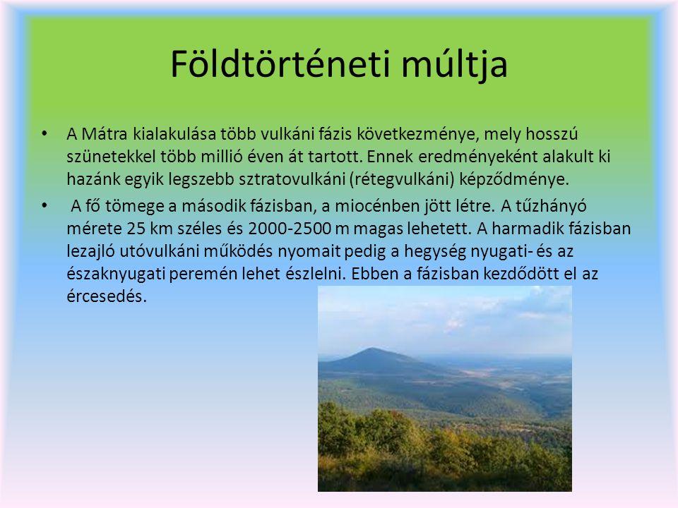 Földtörténeti múltja A Mátra kialakulása több vulkáni fázis következménye, mely hosszú szünetekkel több millió éven át tartott. Ennek eredményeként al