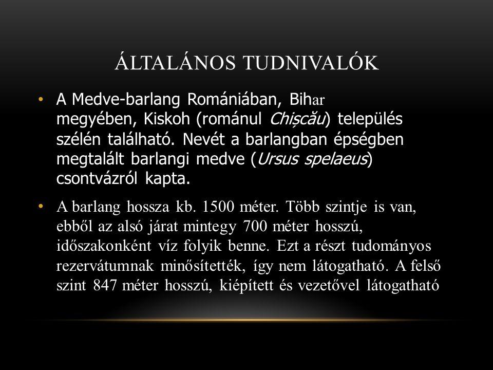 ÁLTALÁNOS TUDNIVALÓK A Medve-barlang Romániában, Bih ar megyében, Kiskoh (románul Chișc ă u ) település szélén található. Nevét a barlangban épségben
