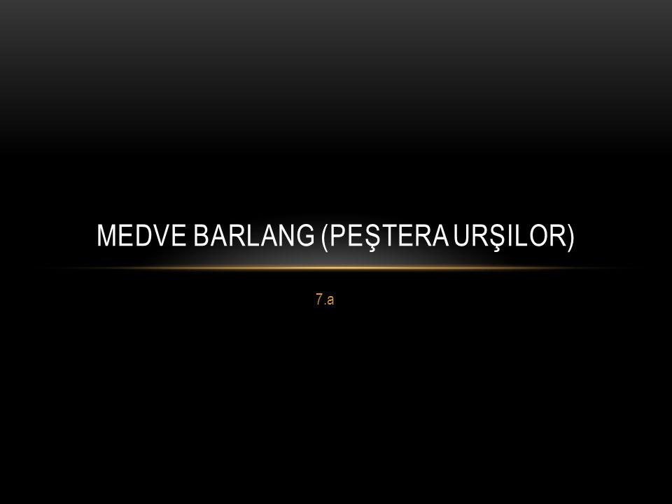 7.a MEDVE BARLANG (PEŞTERA URŞILOR)