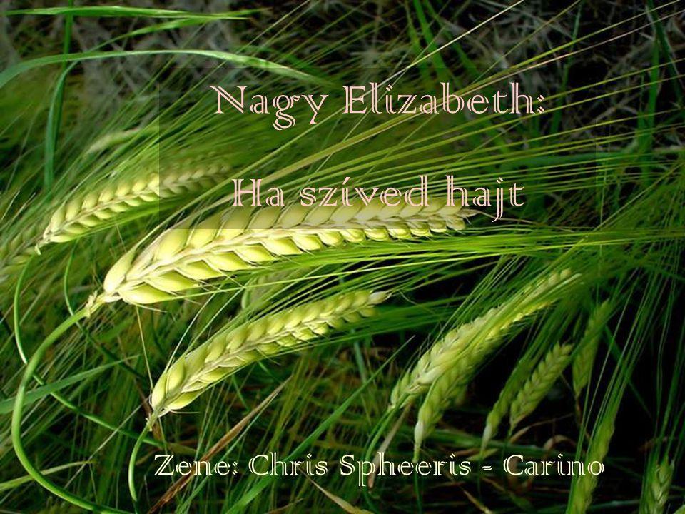 Zene: Chris Spheeris - Carino Nagy Elizabeth: Ha szíved hajt