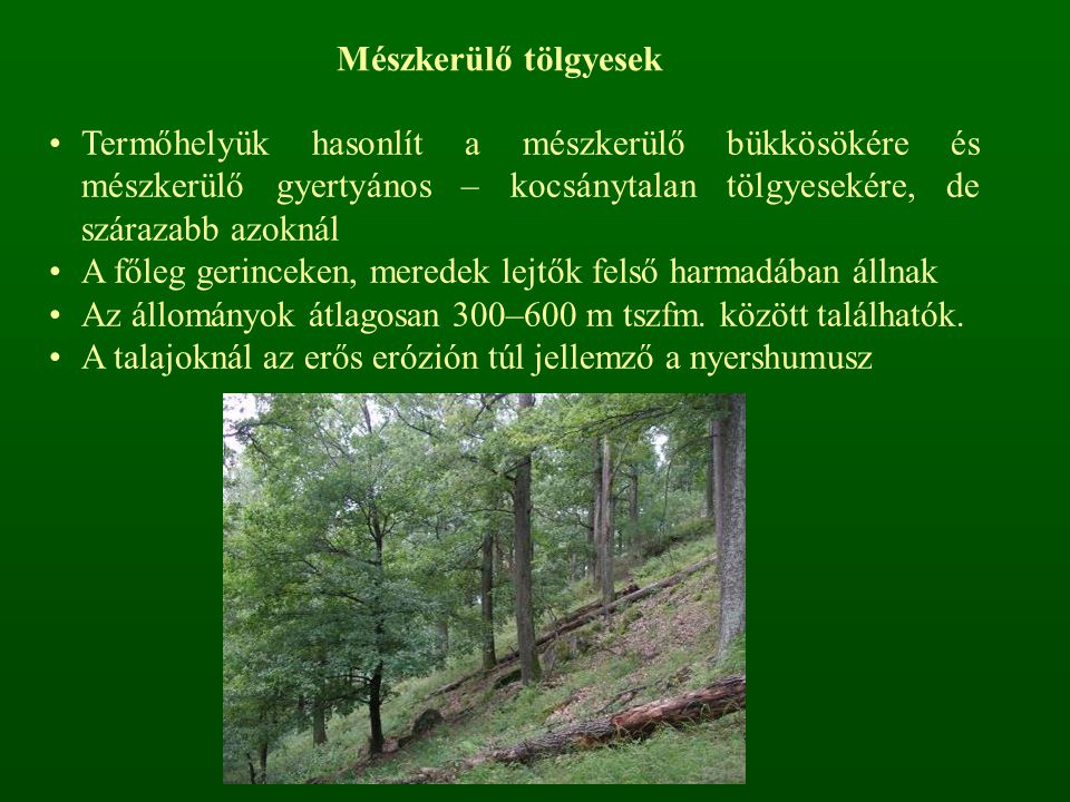 A mohaszint jelentéktelen Hazánkban az Északi- és Dunántúli-középhegységben, Dél- Dunántúlon és kis folton Nyugat-Dunántúlon (Soproni-dv.) találhatók Területe jelentősen csökkent, mivel termőhelyeiket erdei- és feketefenyő ültetéssel próbálták hasznosítani Ezen kultúrállományok csak nyomokban, főként a kiritkuló, idősebb részeken tudnak néhány fajt megőrizni az eredeti fajgazdagságból.