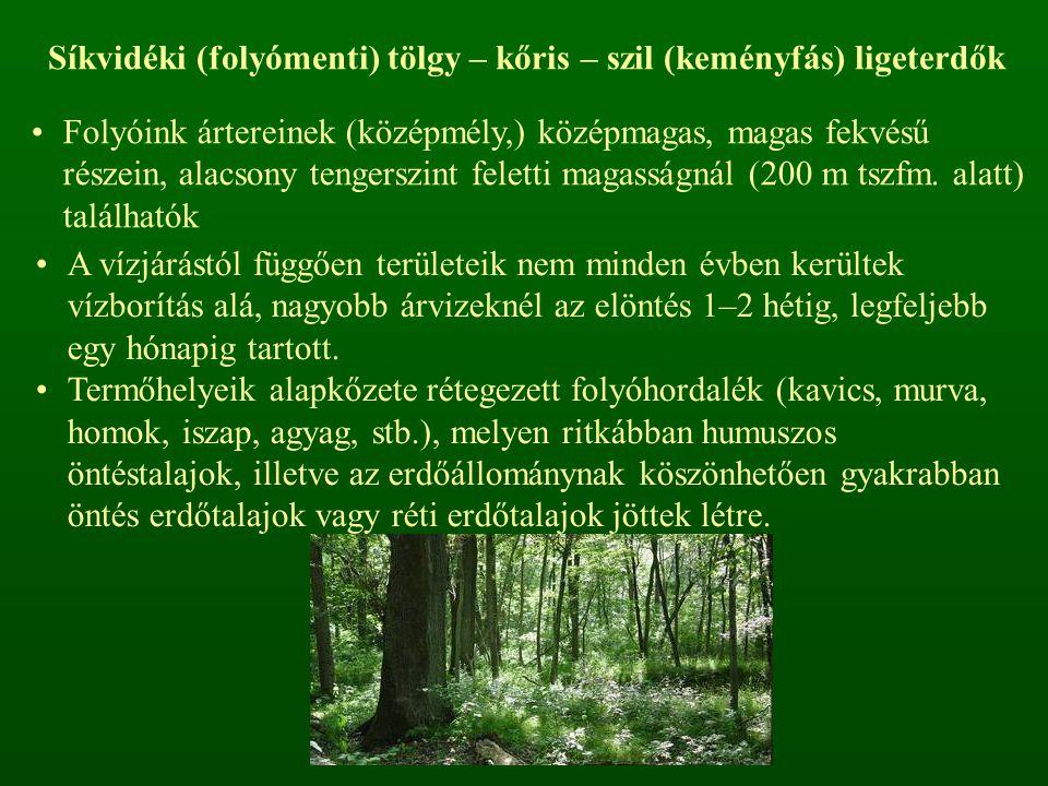 Síkvidéki (folyómenti) tölgy – kőris – szil (keményfás) ligeterdők Folyóink ártereinek (középmély,) középmagas, magas fekvésű részein, alacsony tengerszint feletti magasságnál (200 m tszfm.
