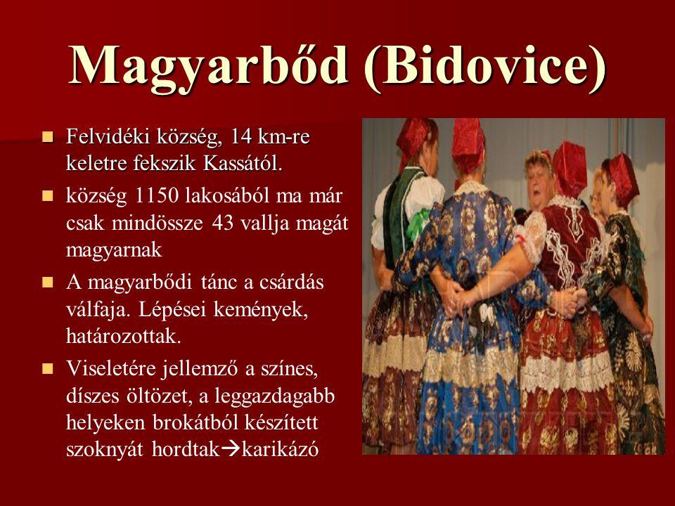 Magyarbőd (Bidovice) Felvidéki község, 14 km-re keletre fekszik Kassától.