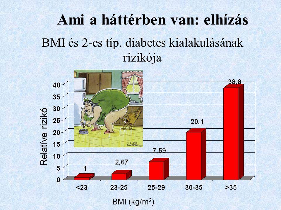 BMI és 2-es típ. diabetes kialakulásának rizikója Relatíve rizikó Ami a háttérben van: elhízás BMI (kg/m 2 )