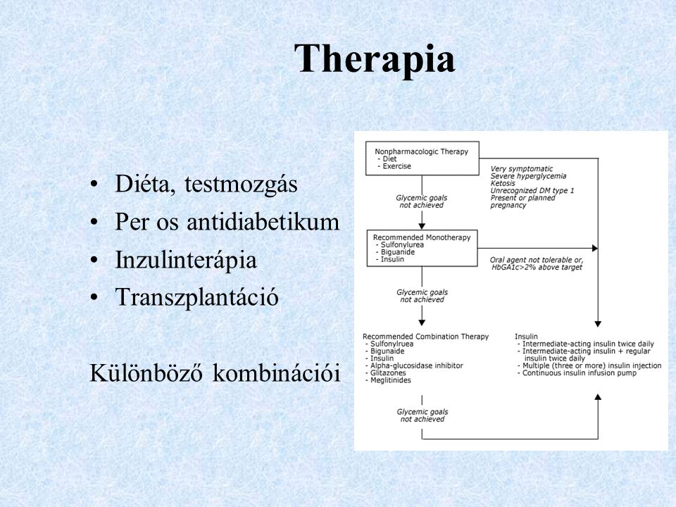 Therapia Diéta, testmozgás Per os antidiabetikum Inzulinterápia Transzplantáció Különböző kombinációi