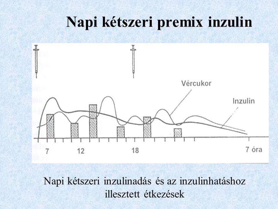 Napi kétszeri premix inzulin Napi kétszeri inzulinadás és az inzulinhatáshoz illesztett étkezések