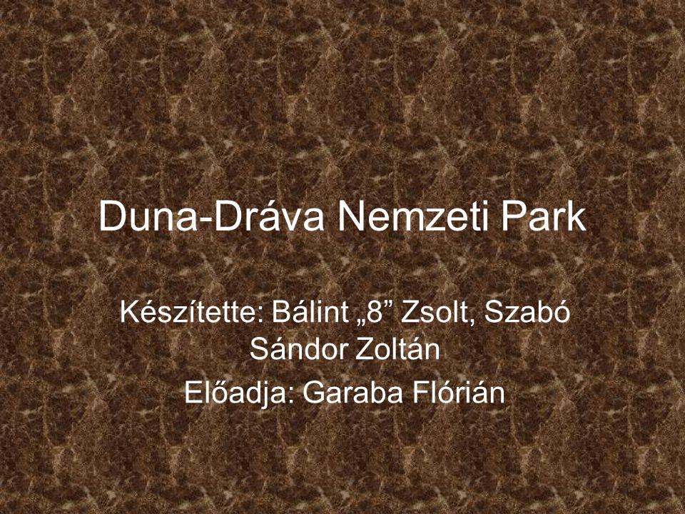 """Duna-Dráva Nemzeti Park Készítette: Bálint """"8 Zsolt, Szabó Sándor Zoltán Előadja: Garaba Flórián"""